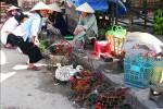 022_vietnam