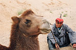 Camels are an extremely common method of transport in the Gobi, and are often used to transport cargo between regions.