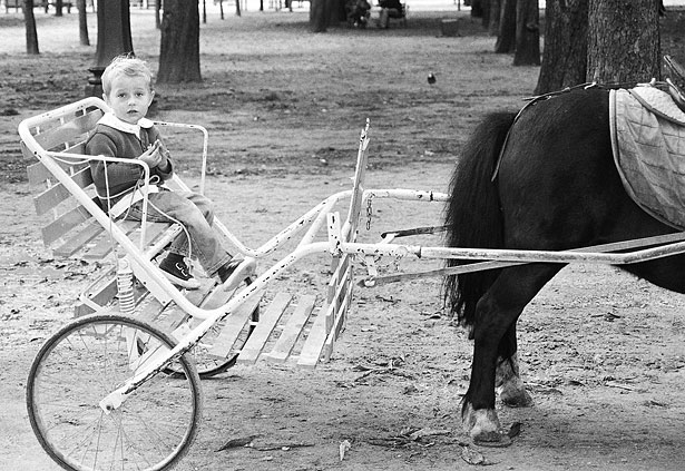 Carrousels and ponies in the picturesque Tuileries gardens near the Louvre keep children happy.