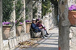 Elderly 'Nicois' rest atop Cimiez hill, a giant park filled with olive, pine and cypress trees.
