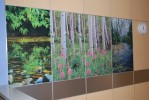 Affordable imagery can be incorporated into any size wall panel system