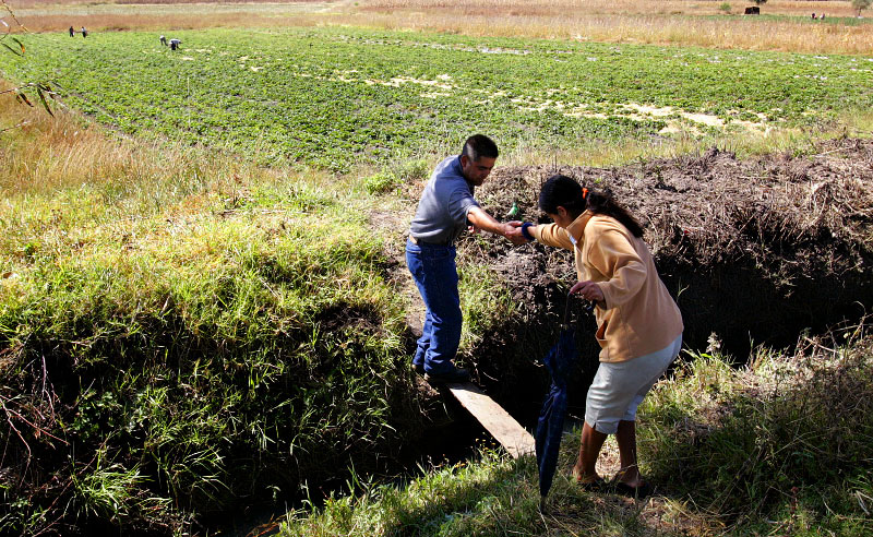 Gervacio helps Martha over a plank to his family's strawberry fields in the rural outskirts of Tupátaro. Gervacio comes from a family of farmers and his dad, 72, still spends most days working in the fields.