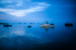 z-harbor_dawn