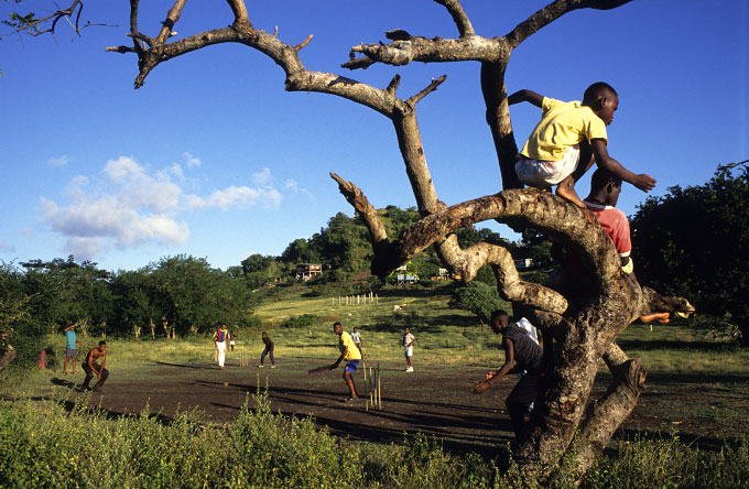 Cricket, Point Salines, 1996