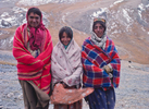 Three Shimshali shepherd girls out with their flocks
