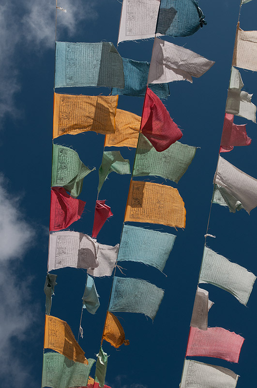 Buddhist prayer flags at the Pele La, BhutanNikon D300, 17-35mm