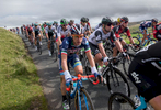 Mark Cavendish in the peleton as it crosses Caldbeck Commons in Cumbria during Stage 2