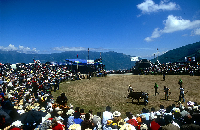Kafkasor Festival at Artvin is an annual event, held in the last week of June. The highlight is undoubtedly the famous bull-wrestling tournament...Nikon F5, 17-35mm, Fuji Velvia 100