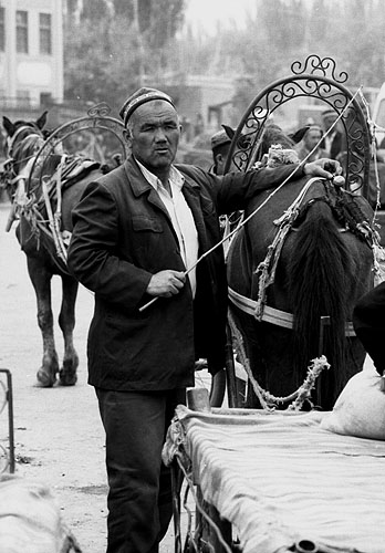 Mule-cart delivery man awaiting business at the periphery of the vast open-air Sunday market