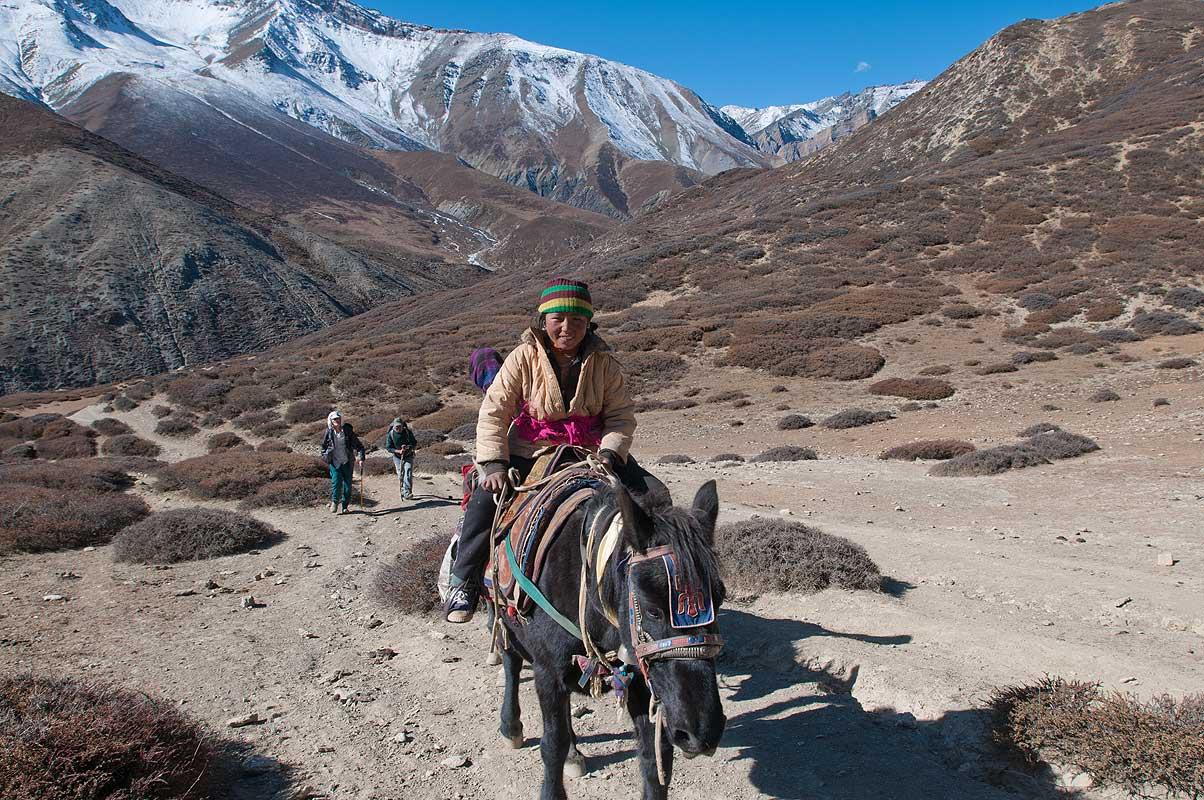 Horseman near Shey, Dolpo, Nepal