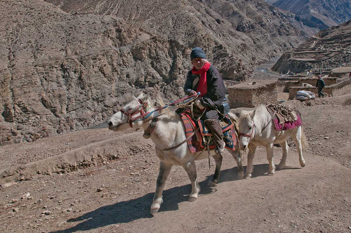 Horseman near Sibu, south of Saldang, Inner Dolpo