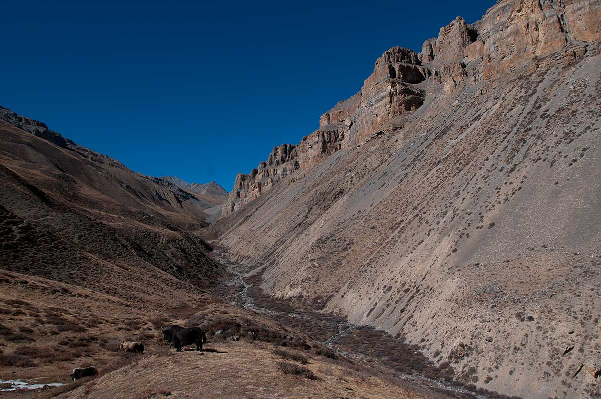 A view back up valley towards the pass from near Tokyu village, Dolpo