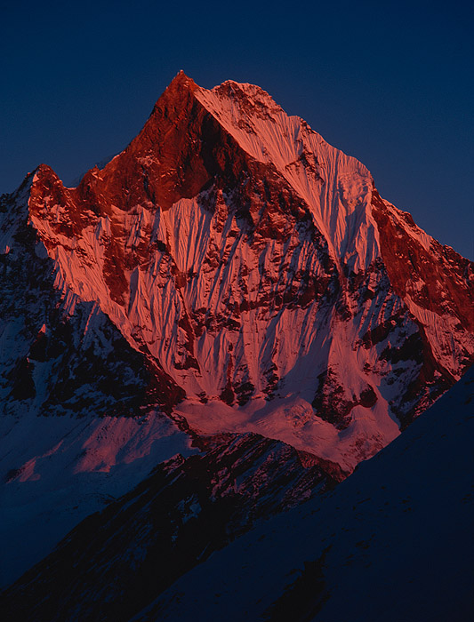 Telephoto of the summit at sunset, from the Annapurna SanctuaryProject VeronicaMedium format images re-scanned in a professional glass film- holder with my Nikon Coolscan 9000 and Silverfast 8 software. These images display larger on the site - enjoy!Bronica ETRSi, 150mm, Fuji Velvia