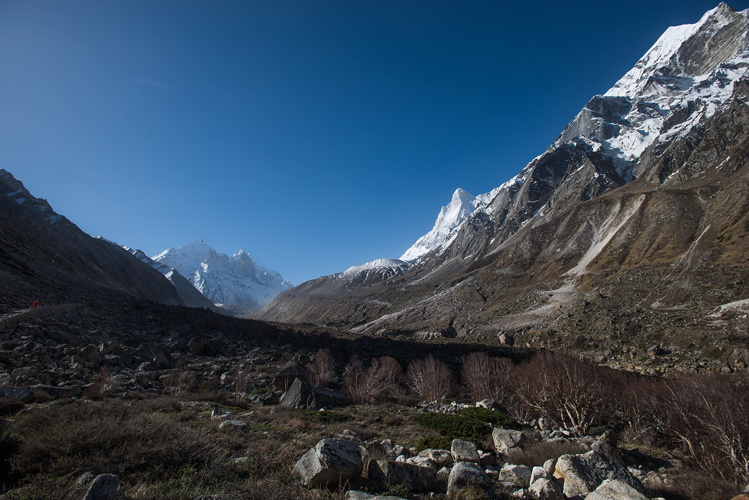 On the trail up to Gaumukh from Bhojbas in the Bhagirathi valley. Early in the morning. Ahead are the Bhagirathi peaks, and Shivling is just appearing to the south.