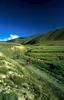 Returning to Karkara Mountain Base from an epic morning's heli-bikingNikon FM2, 24mm, Fuji Velvia
