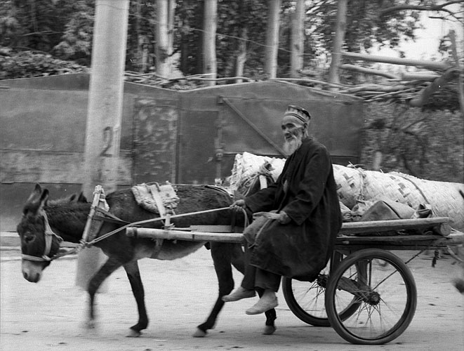 Goods from the Sunday market are taken away for delivery by an enormous fleet of donkey cartsBronica ETRSi, 150mm, Kodak T-Max 400