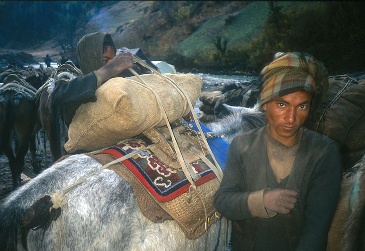 While the deep valley floor is still in the grip of the overnight freeze, these caravan-drivers load up their mules and set off on their day's march towards Tibet. Humla has never been able to grow sufficient grain to feed its population, and traditionally relied on trans-Himalayan trade to make up the deficit. Rice and barley are taken to Tibet and exchanged for salt, which is then caried back to the lowlands. The difference in the exchange rates for the two commodities at either end of this long and arduous trade route enables the participants to add considerably to their family's stores of grain at home.Canon EOS500, 28mm, Fuji Velvia
