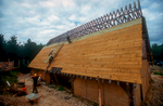 The softwood sarking boards being put on ready for shingling with oak.This is from the Wildwood Trust website;{quote}The site was cleared in 2001 and work on the Longhall commenced at Easter the following year. At the end of 2004, the main structure of this 20m × 10m × 10m building was completed and before the onset of winter, we had clad most of the roof with softwood sarking boards, awaiting the first 10,000 hand-cleft oak shingles for delivery in 2005. That year saw the completion of the porches and the commencement of the huge task of nailing on the shingles. Walling advanced well, too. In 2006, the front roof was completed and shingling advanced about a third of the way up the back roof. The walls were completely infilled, doors and hinges were fitted and our hall was secure for the first time. 2007 saw the completion of shingling, some 18,000 eventually finding their way onto the roof.It is an impressive sight and is certainly the largest reconstructed early medieval building in private hands in Europe. Built entirely of English oak, all of which has been harvested from trees growing in Kent, (many within a couple of miles of the site), the site in general and the Longhall in particular, has been conceived, planned, purchased, designed and constructed by our members. What you see is the result of many long hours of research, discussion and the practical application of skills with which our ancestors would have felt at home.{quote}