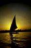 Sailing at sunsetNikon F5, 17-35mm, Fuji Velvia 100
