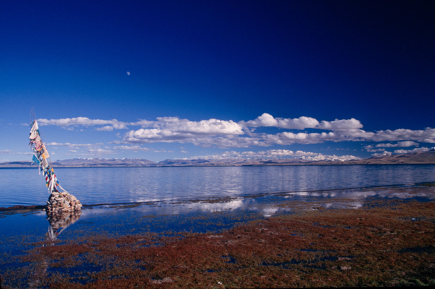 manasarovar_flags_96RVP