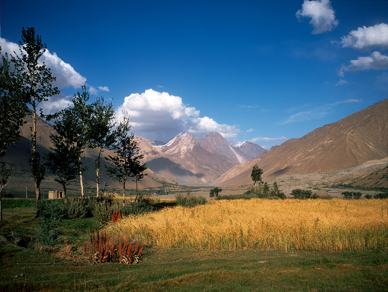 In the Yarkhun valley, ChitralNWFP, PakistanBronica ETRSi, 50mm, Fuji Velvia