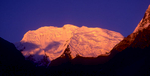 The summit of this peak lies on the border with Tibet. Seen at sunset from Nubama Dhang in the upper Langtang Valley.Nikon FM2, 105mm, Fuji Velvia