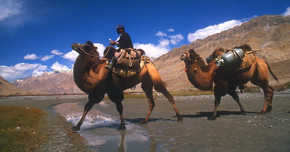 At Sughet Jangal, Chinese TurkestanNikon FM2, 24mm, Fuji Velvia