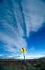 Road sign on the Patagonia HighwayNikon FM2, 24mm, Fuji Velvia