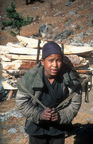 As the days shorten and the chores of animal husbandry are over for the summer, the thoughts of Humlis turn to keeping warm during the long winter months. Firewood is cut high above the town and carried down - mostly on people's backs like this.Canon EOS500, 28mm, Fuji Velvia