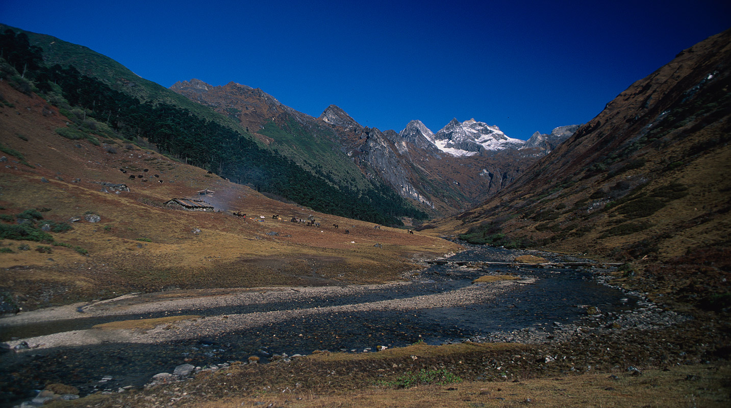 An idyllic camping ground a day south of Dhur Tsachu on the route out of Lunana via the Gophu LaNIkon FM2, 28mm, Fuji Velvia