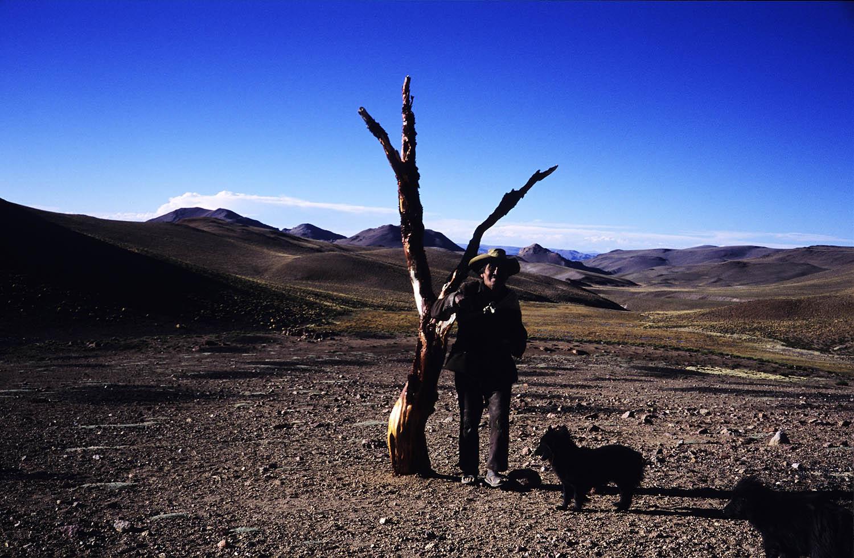 Llama herdsman near his dwelling.Pastor de llamas cerca de su casa.