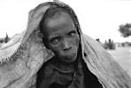 new_1000_famine06