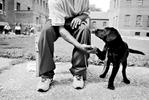 puppiesbehindbars_06_web