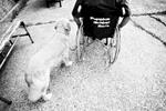 puppiesbehindbars_10_web