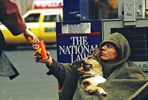 Homeless man with his dog begging on 5th Avenue in New York City.
