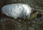 Homeless man wrapped in plastic to keep warm on a minus zero degree temperature day in the winter in New York City.