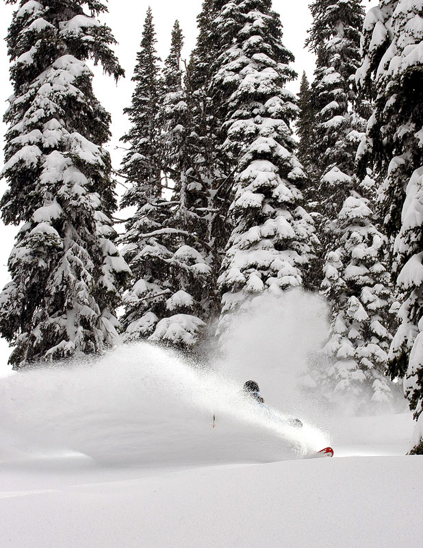Jordan Sinnott slashes some fresh powder at Island Lake Lodge, Fernie, BC.