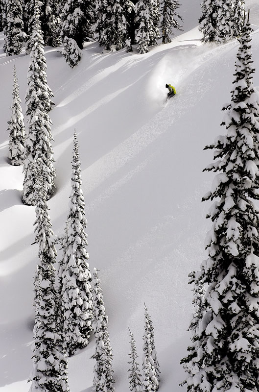 Derek Root slashes a line into the untracked powder at Island Lake Lodge, Fernie, BC, as the sun comes out to play.