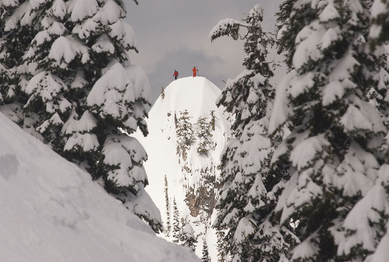 A skier scopes his line under the watchful eye of a guide at Island Lake Lodge, Fernie, BC.