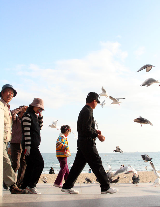 Sea Gulls scatter as people walk on a walkway above Haeundae Beach, in Busan, South Korea.