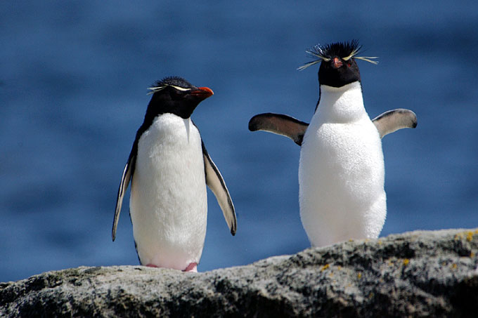 Antarctica02