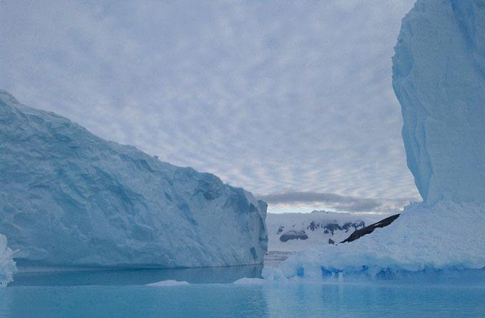 Antarctica32