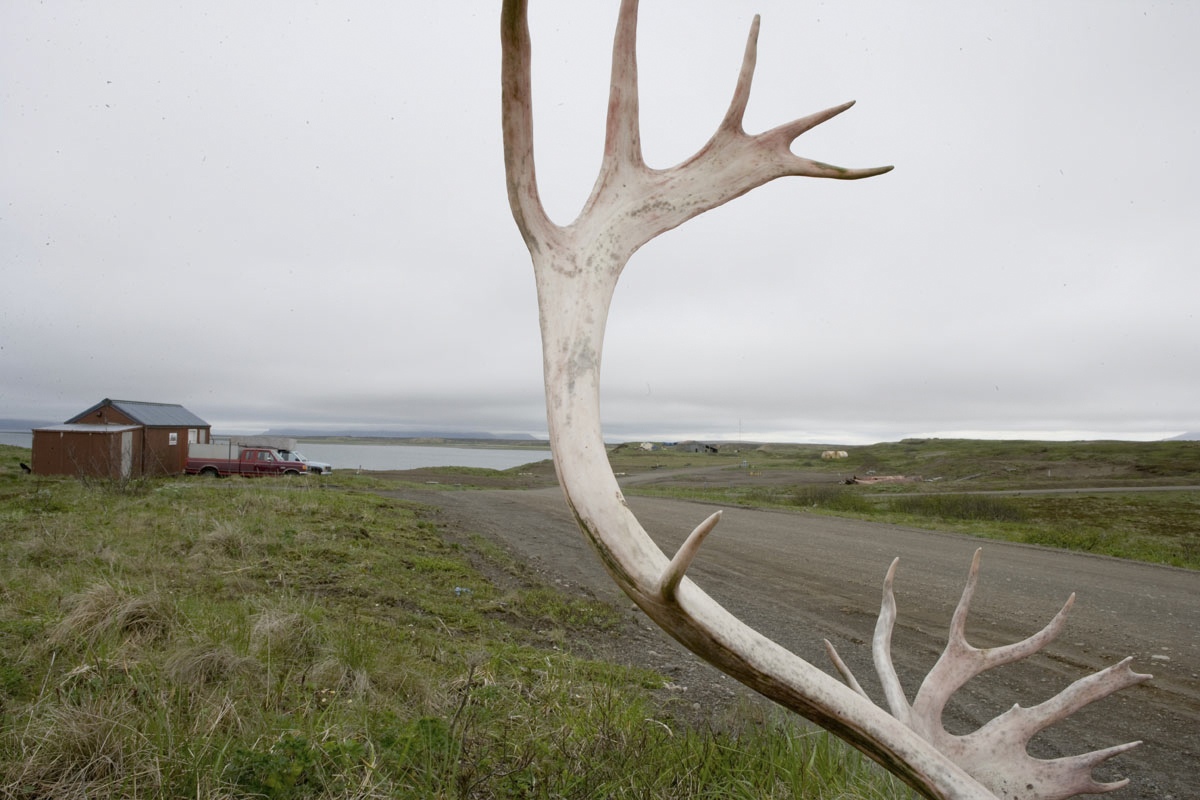 Antlers frame the landscape of Cold Bay.  The town has an estimated population of 60 year-round residents.
