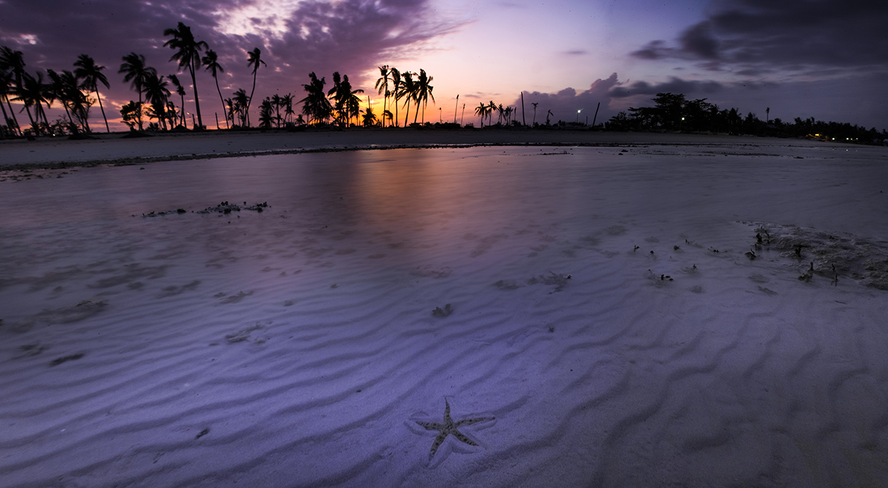 A solitary starfish crosses a sand dune in the purple waters off Bantayan Island.