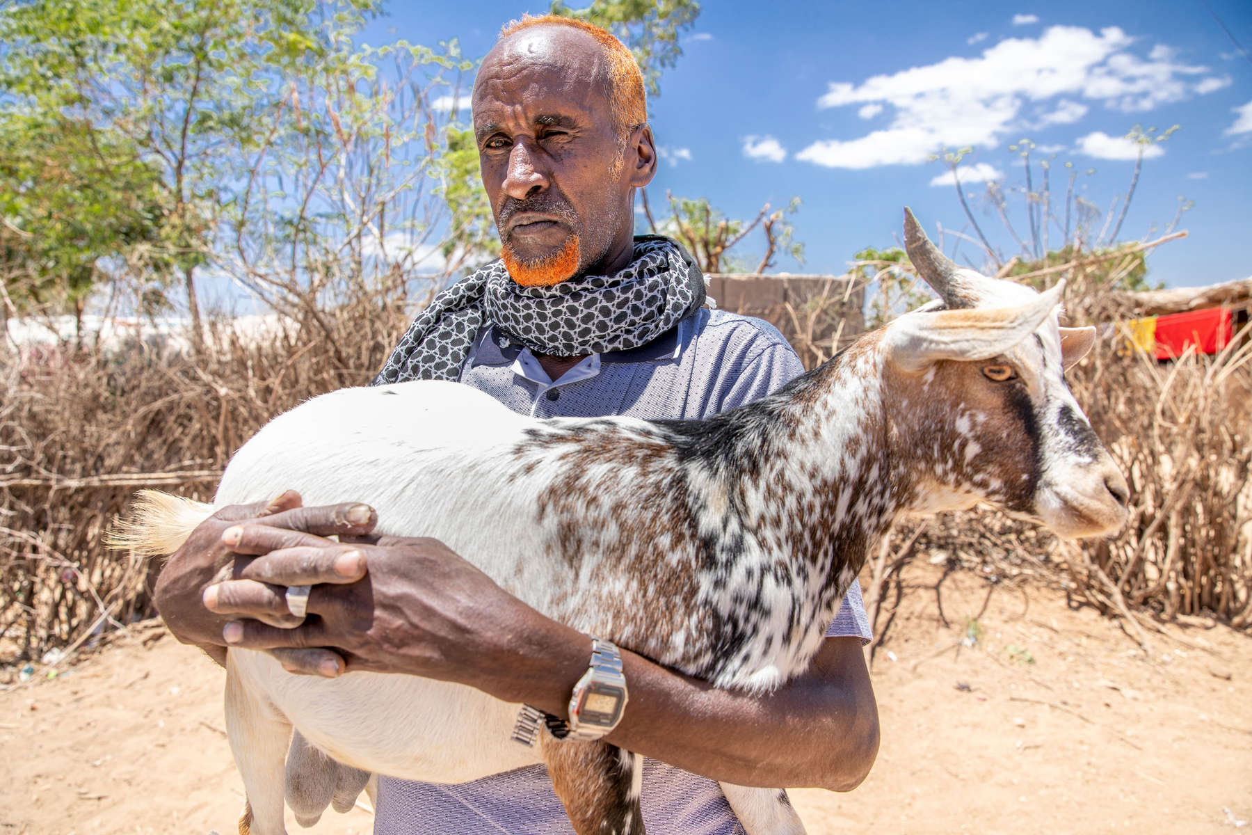 "Ali, 50, is a livestock trader. Through the PRIME project, Mercy Corps opened a slaughterhouse in nearby Jijiga that buys animals from him. Since he no longer has to export them to Addis Ababa on the other side of the country, his livelihood has improved significantly.As climate change gets worse, Ali says, local pastoralists are bracing for longer droughts. ""People in this area predict rain through their experience and using the stars,"" he says. ""They know how to forecast it very well. They see the stars and the signs in the wind and use different indicators to predict the coming rain season. This year they are very afraid."""