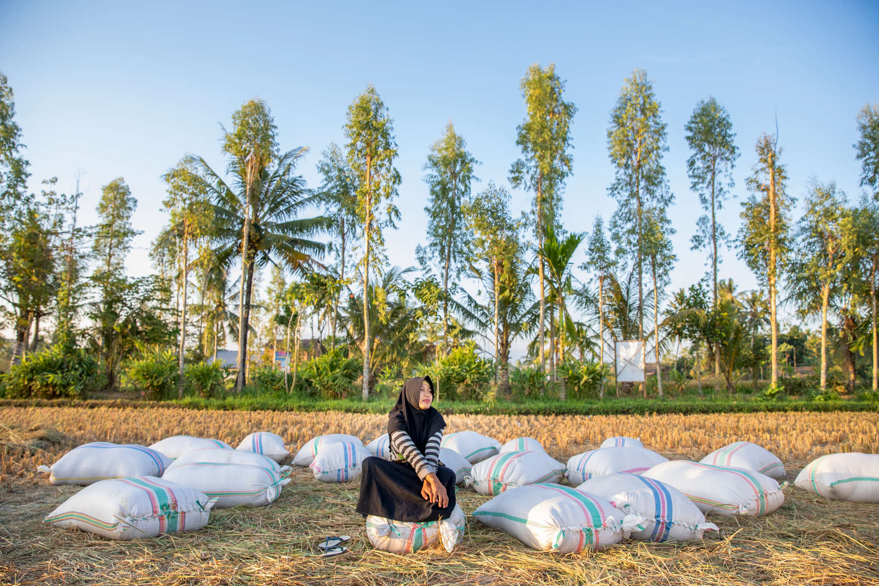 Ida sits on bags of recently harvested rice.  At 23 years old, she is the youngest female farmer in Terara, a small village on the island of Lombok. As far as she knows, she's the youngest farmer in all four neighboring villages as well.Ida started working in the rice fields when she was 13 years old, in the seventh grade. She learned how to farm by watching her parents and her two older brothers, who've been farming since she was born. Ida's dream was to become a pilot — to explore outside of her village. Instead, she's followed in the footsteps of her family. She dropped out of school after the ninth grade, in 2012, as a result of mounting pressure from her parents – particularly her mother – who felt she should be helping them in the field instead of studying.Ida's mom holds a very conservative, traditional Indonesian view. She never went to school, and believes there's no need for girls to pursue higher education. In part, because it's difficult to find jobs with or without education, but mostly because she believes they're needed most at home – to take care of the family and tend to the fields. When Ida's asked if she enjoys farming, she says she does because she has to, because there's no other choice.As the treasurer of her farmer group, Ida is one of the most trusted members in her community, tasked with tracking and managing finances each month. It's a position with great responsibility, which requires high attention to detail.Mercy Corps is helping Ida and her group produce greater yields in the face of an increasingly challenging climate by providing training on effective farming practices. We have also provided training in administration and financial reporting, so Ida and other leaders of her group are better positioned to help their group stay strong. Mercy Corps has also connected Ida to Mandiri Cash, which has allowed her to both save time and money — about 2 million rupiah of her own savings ($143 USD).