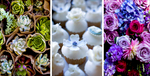 Details_52_Succulents_Cupcakes-_n-Flowers