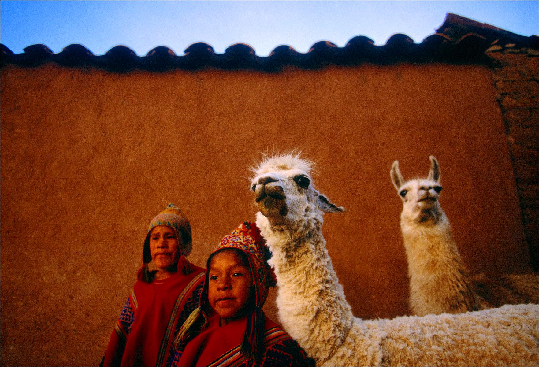 FineArt_23_Peruvian-Boys-_-Lamas
