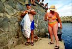 FineArt_27_Tourists_F-de-Noronha_-Brazil_v2