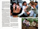 Published_Koalas_National-Geographic-Mag_07